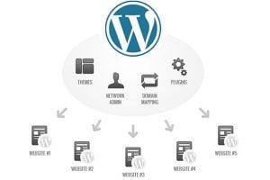 Guía para activar y configurar WordPress multisite (multisitio) paso a paso